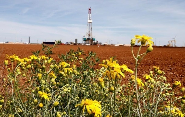 В Украине планируют законсервировать 6 млн га с/х земель